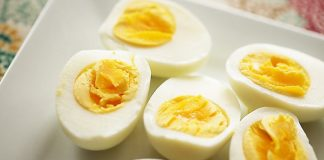 Photo Image Can Dogs Eat Boiled Eggs What Benefit Eggs for Dog
